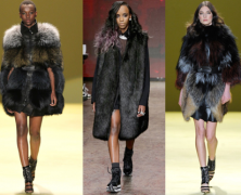 Modeling Ethical Dilemma: To Pose in Fur or Not