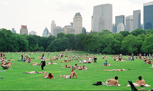 Sheep's Meadow, Central Park